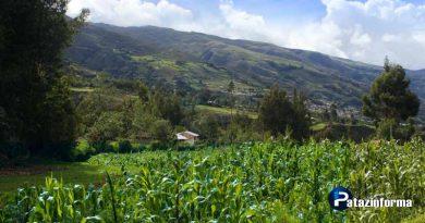 gerencia-de-agricultura-tratara-problematica-en-tayabamba
