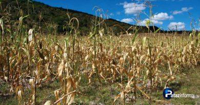 peligran-cultivos-por-escasez-de-agua-en-ande-liberteno