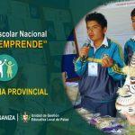 concurso-escolar-crea-y-emprende-expoferia-provincial-2017