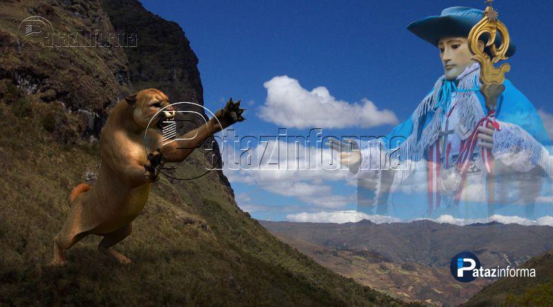 TAYABAMBA | La leyenda del PUMA SALVAJE de Puerta del Monte