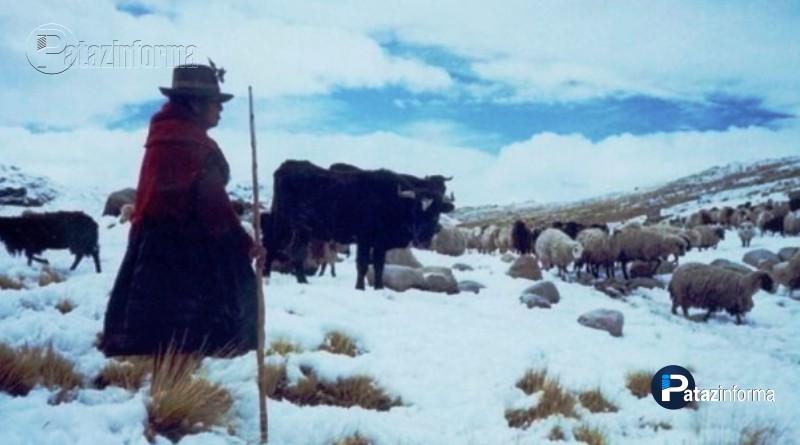 PERÚ | Más de 56 mil afectados por bajas temperaturas en 11 regiones