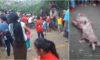 PATAZ | Tragedia en carreteras. Vehículo con 4 personas cae al río Marañón