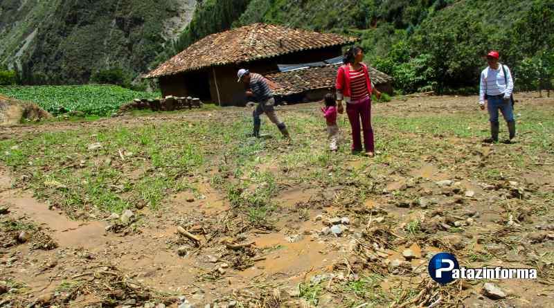 Granizada y huaicos afectan más de 7 hectáreas de cultivo en Tayabamba