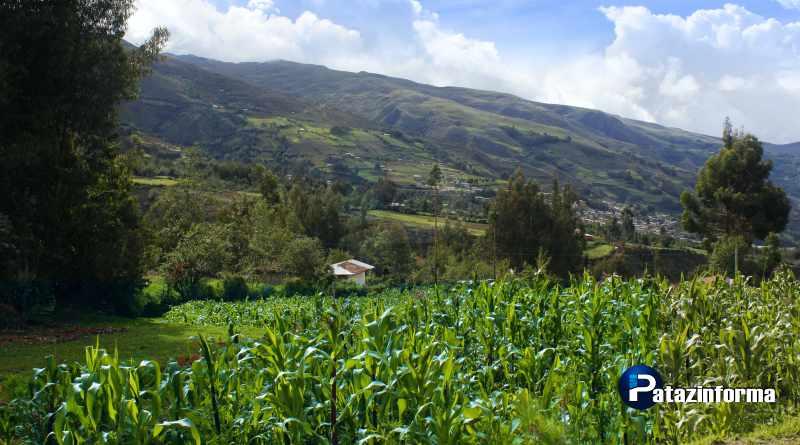 Problema agrario de Pataz será debatido este mes en su capital Tayabamba