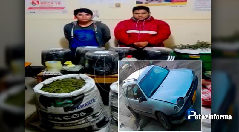 HUANCASPATA | Policía capturó a dos personas con 50 kilos de marihuana