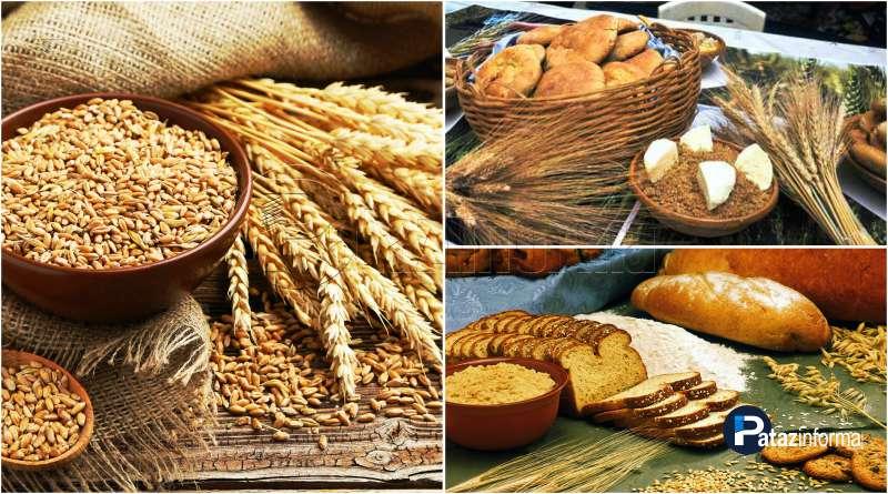 PATAZ | Realizarán II Gran Feria del Trigo en la sierra de La Libertad