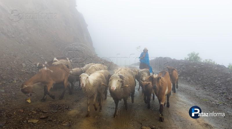 PATAZ | Distritos patacinos soportan lluvias por más de 10 horas