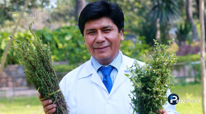 PERÚ | El agua de MUÑA puede sanar en 15 días una gastritis leve