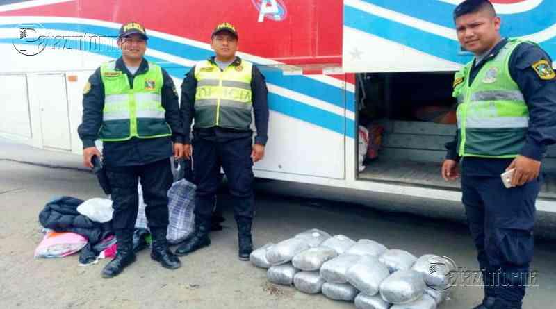 ANCASH | Incautan 21 kilos de marihuana transportados en bus desde Pataz