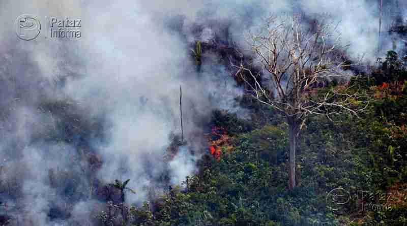 El incendio de la Amazonía ya es tan destructivo como el de 1998