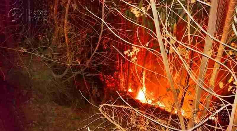 Incendio consume más de 30 hectáreas de bosques en Usquil