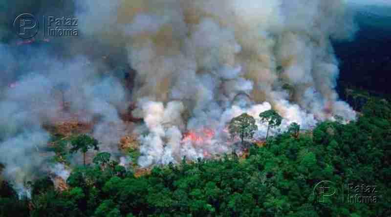Incendios en la Amazonía: Convocan a protesta en Trujillo