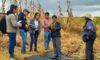 Fortalecerán producción de quinua y chocho en 6 provincias