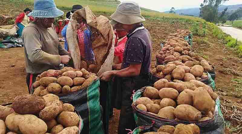 Mayor demanda de alimentos beneficiará a pequeños productores