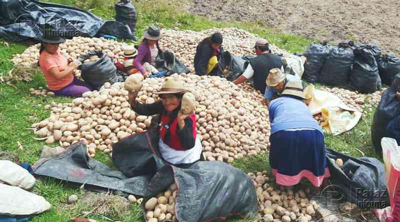 Bono Rural 2020: ¿Quiénes podrán acceder al subsidio de S/ 760?
