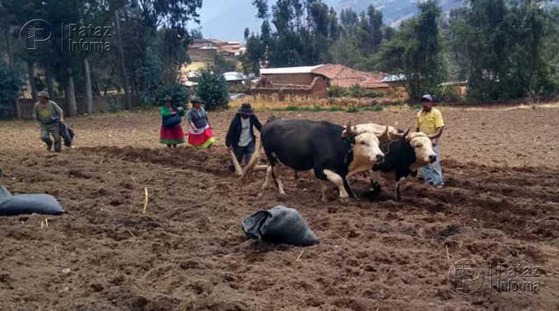 Entregarán bono de 760 soles para familias rurales vulnerables